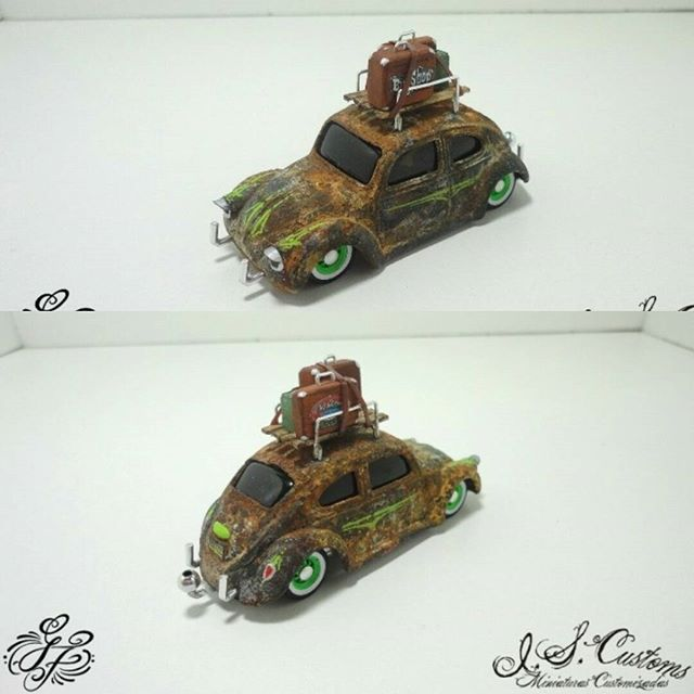 i.s.customs ratted beetle
